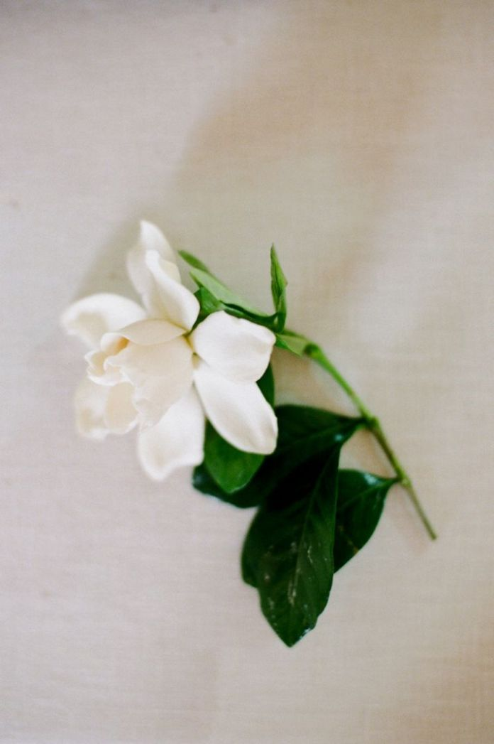 Elegant gardenia groom boutonniere