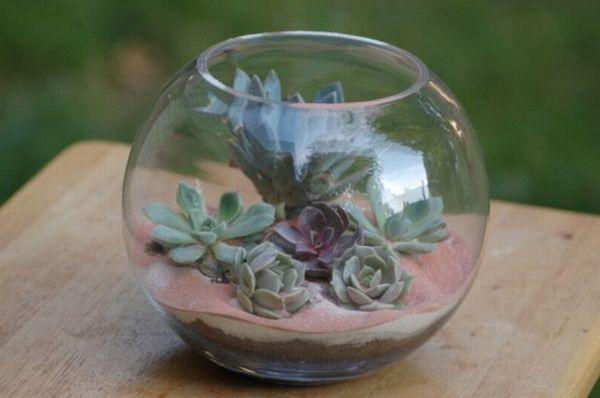 DIY Succulent terrarium table centerpieces