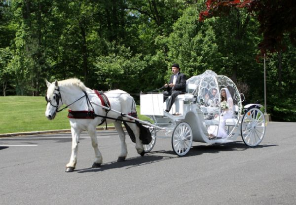 Horse Ride or Horse-Drawn Carriage