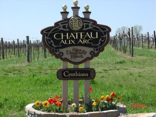 The Cheteau Aux Arc