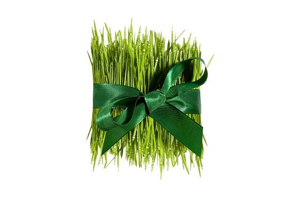 Tips to green your wedding