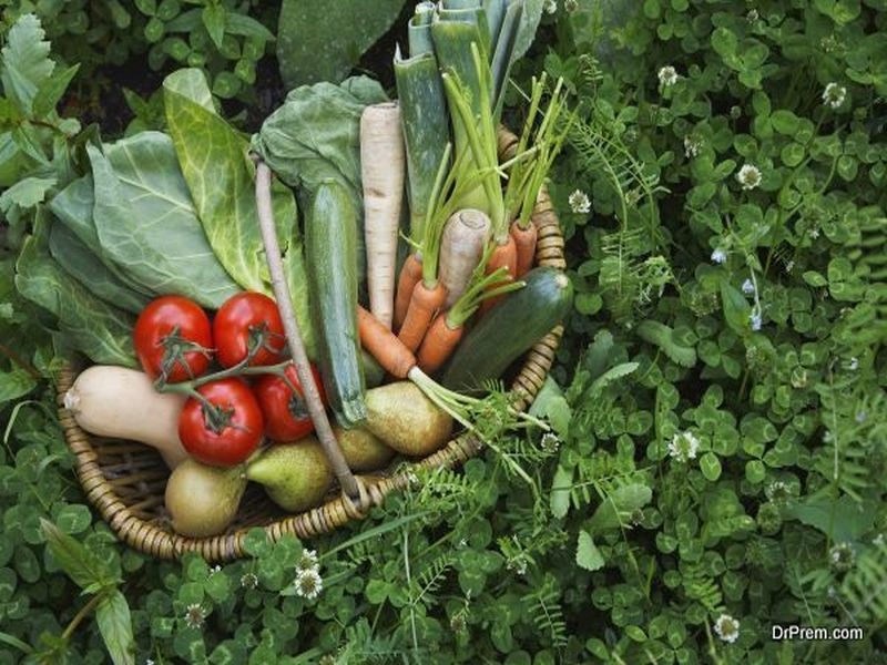Organic grown food
