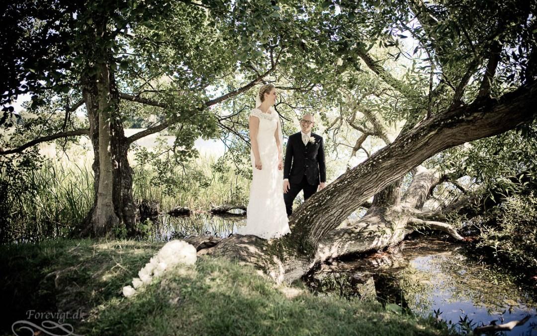 Eco-Friendly Wedding Gowns