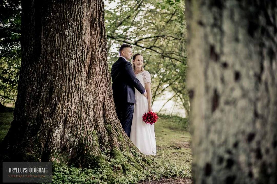 Need Wedding Assistance?