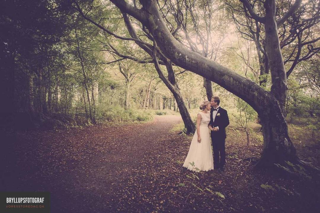 4 Ideas for Unique Wedding Favors