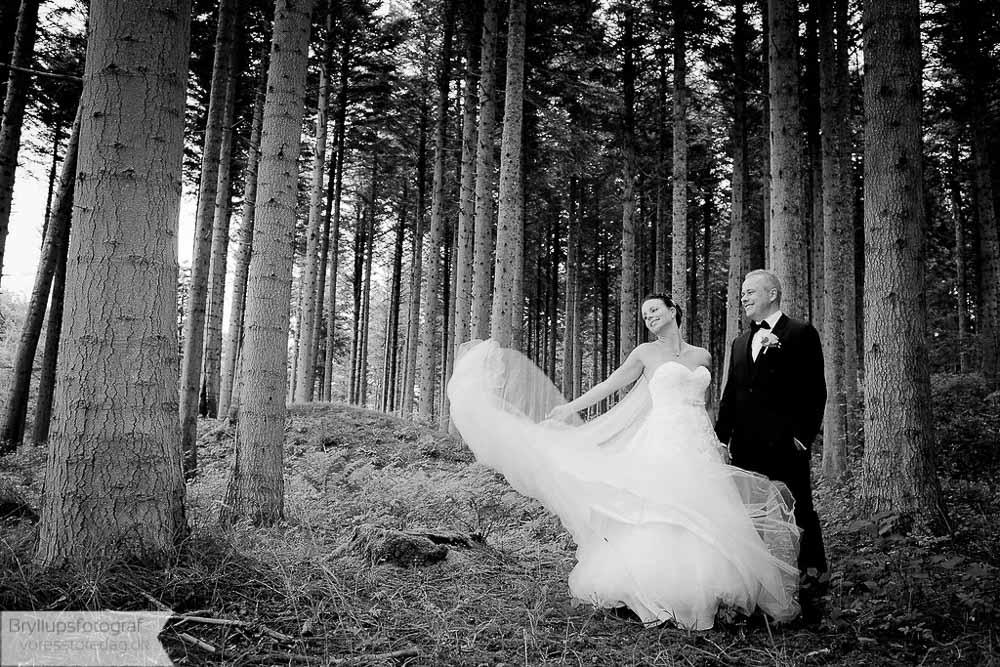 bryllupsfoto Nordjylland
