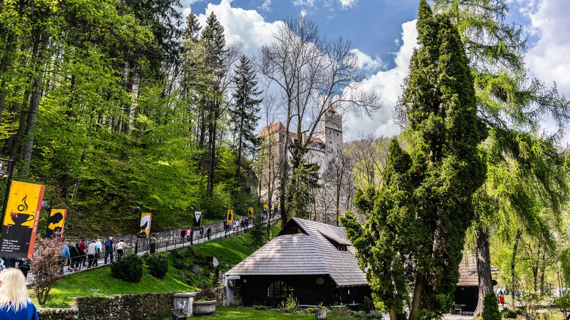 Honeymoon in Transylvania Bran Castle