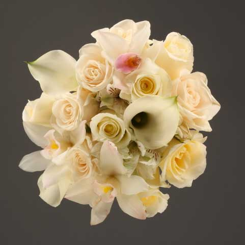 Picture Of  Shades Of White Bouquet