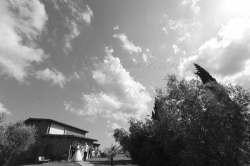 wedding-san-gimignano-tuscany-italy_029