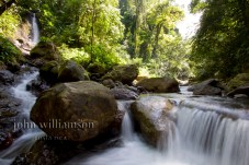 Nature Photography in Manuel Antonio Costa Rica Rainforest Stream