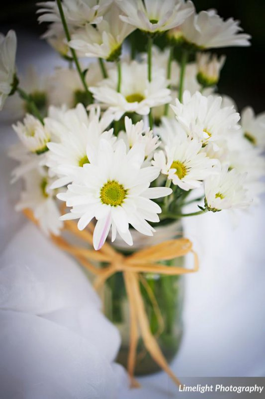 Daisies in Mason Jar with Raffia
