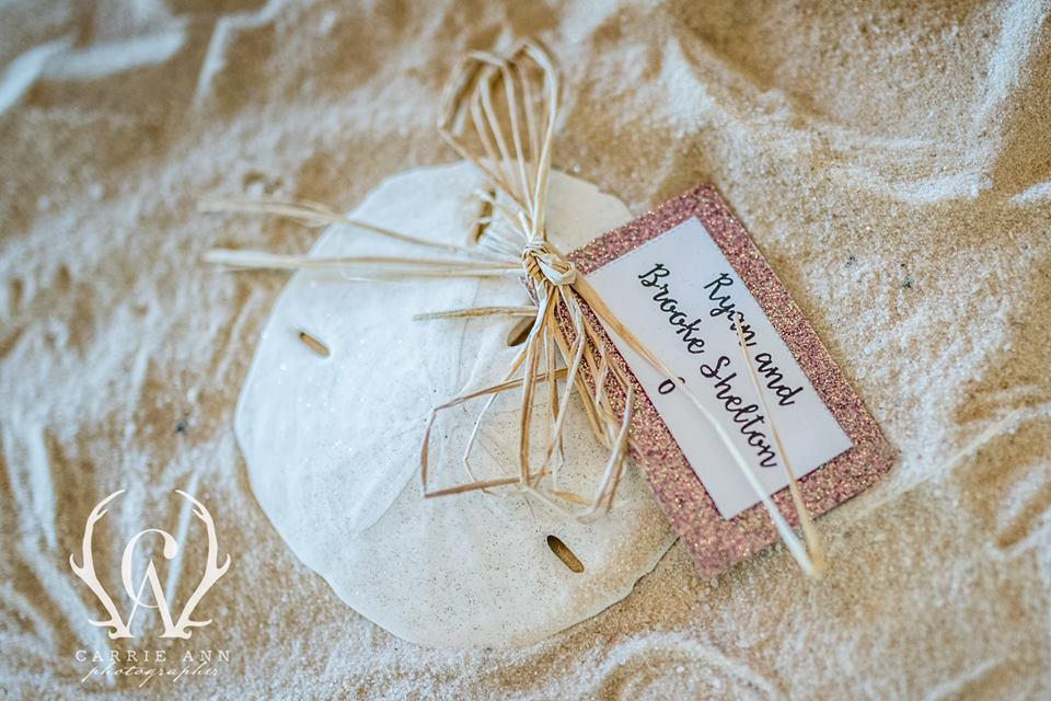 Sand Dollar Place Card