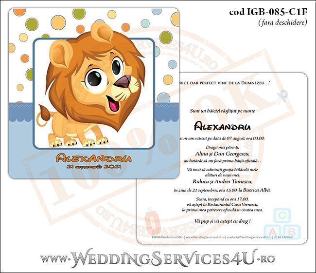 IGB-085-C1F_Invitatie_Botez_cu_pui_de_leu_leut