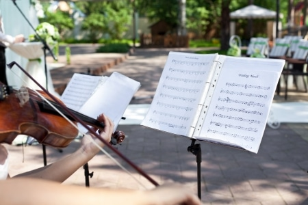 wedding ceremony music violinist playing wedding march