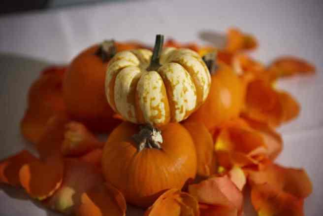 pumpkin & leaf decor for fall wedding