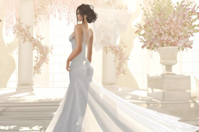 wedding dresses - wedding dress shopping