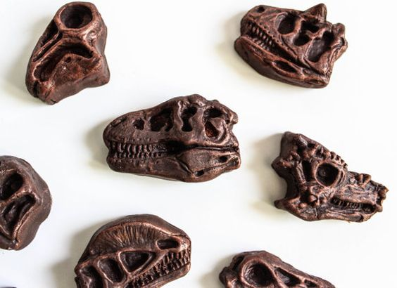 Fossil Shaped Chocolate Candy