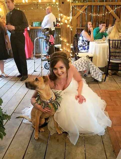 Tips for including your dog in your wedding ceremony. The bride and her dog.