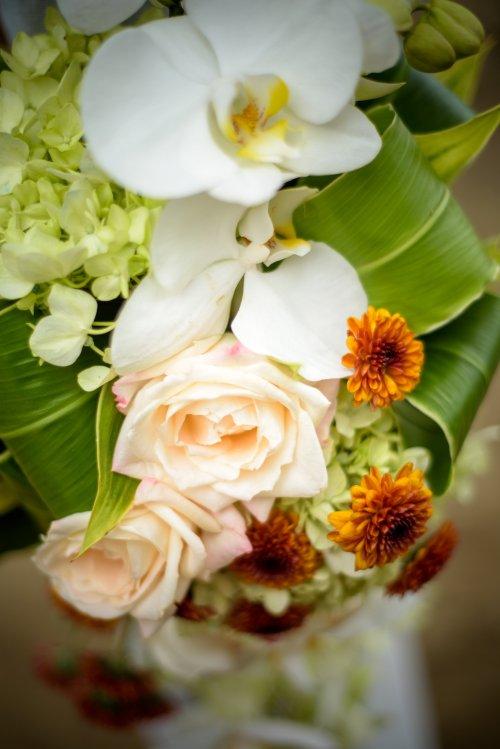 View More: http://costaricaweddingphotographers.pass.us/shiobansteven