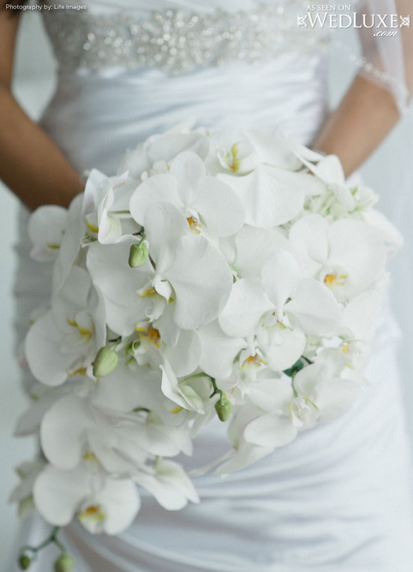 luxury white orchid Cascading style wedding bouquet