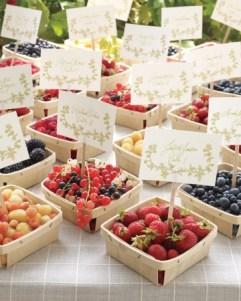 Summer berry seat placings
