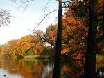 Der Möwensee im Herbst