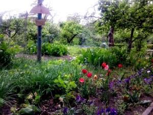 Beet in der Gartenarbeitsschule