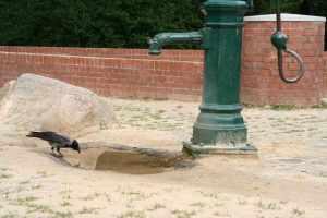 Abstimmen für einen funktionierenden Trinkwasserbrunnen auf dem Vinetaplatz. Foto Dominique Hensel.