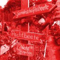 Weddingmelder-Wochenschau #16/17