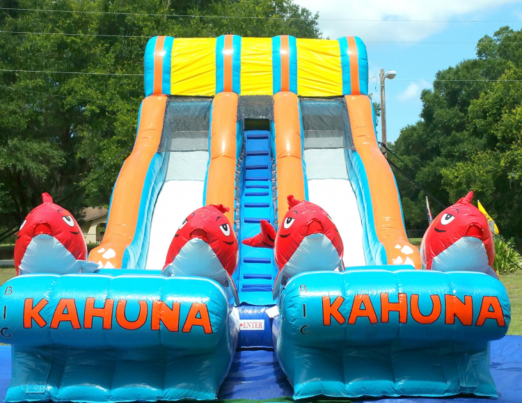 19' Big Kahuna Dual Water Slide