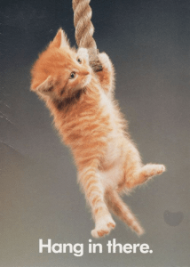 Picture of kitty hanging from rope. Text: Hang in there.