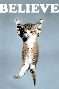 Picture of triumphant kitty. Text: BELIEVE.