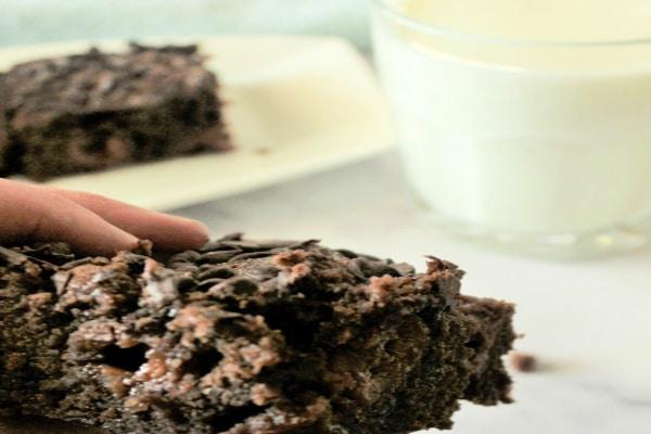 Brownies in Hand