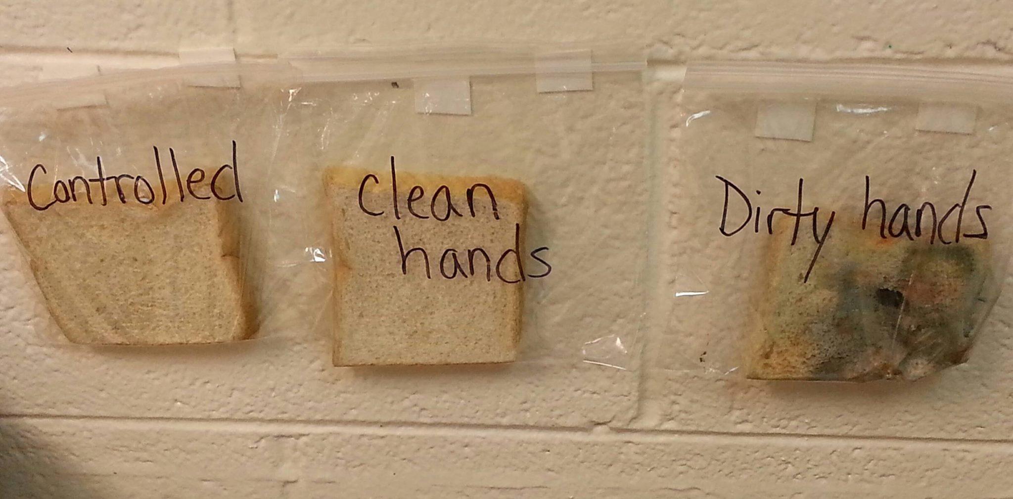 Hand Washing We Dish Nutrition