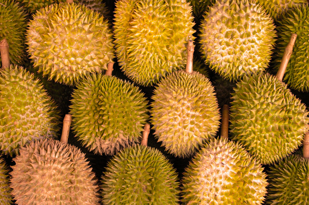 Where is my Kadayawan Durian?