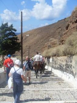 ...walk...or donkey
