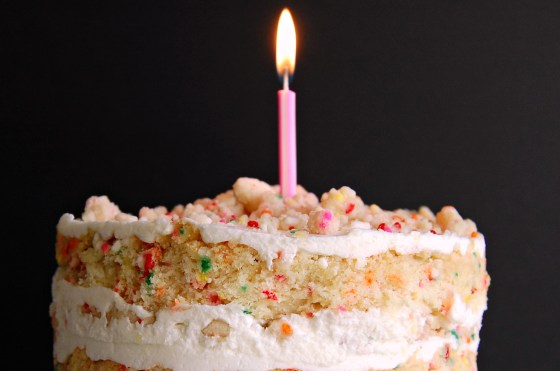 confetti cake crop 8477