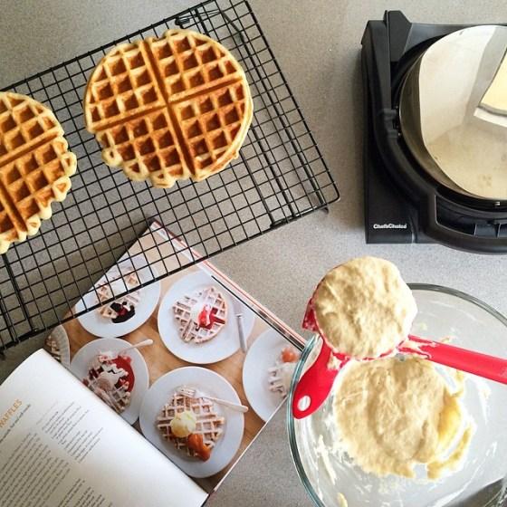 jenis waffles