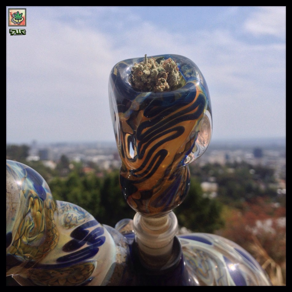#Pieces @WeedConnection