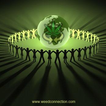 #iNTERNATiONAL #DiRECTORY @WeedConnection