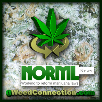 #NORML #News @WeedConnection