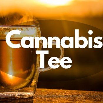 Wir zeigen wie man schnell und leicht selber Cannabistee machen kann.