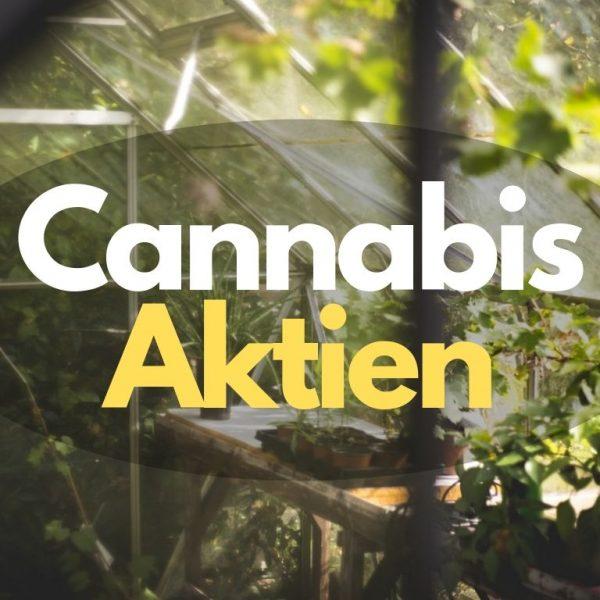 geld verdienen mit cannabis aktien stocks anlegen werte