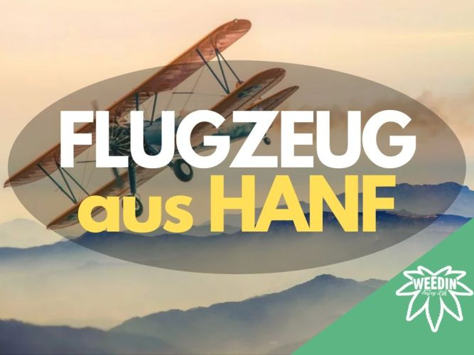 Erstes Flugzeug 75% aus Hanf mit Biohanföl