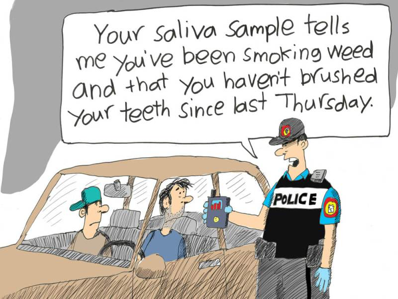 fed approve device driver cannabis 2 - Is Canada ready? Federal government set to approve first device for testing drivers' saliva for cannabis