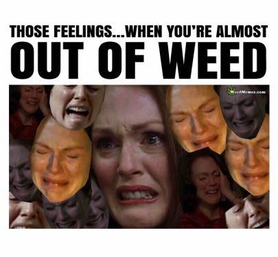 Out of Weed Feelings Meme - Weed Memes