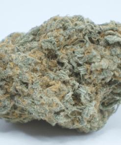 Online Dispensary Canada - Chocolope Single