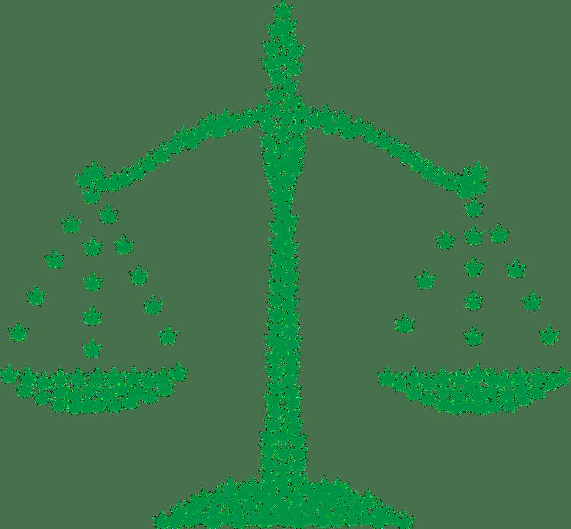 marijuana legalization, legal weed, medical marijuana, marijuana decriminalization,