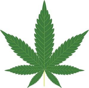marijuana legalization, marijuana legislation, legal weed, mj, weed, marijuana