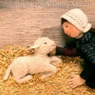 May Had a Little lamb